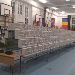 Magyar Bajnokság Mór 2017.