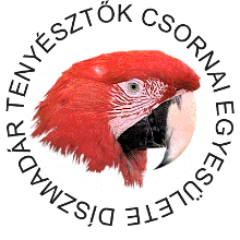 h02_logo_2